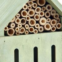 Pet Ting Small Green Wooden Insect Hotel